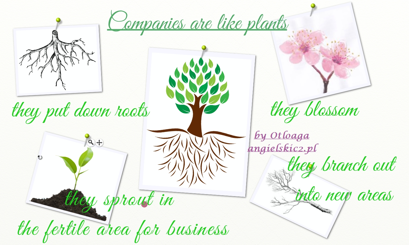 companies plants metaphor