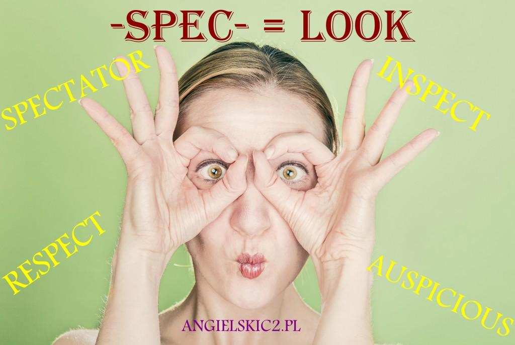SPEC LOOK